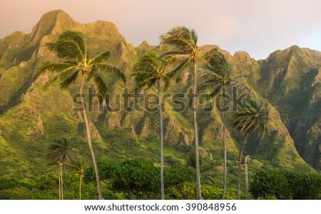 Ko'olau Mountains from Kualoa Regional Beach Park, Oahu, Hawaii  - stock photo