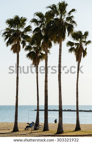 KOBE, JAPAN - JANUARY 2, 2014: Palm trees in Suma beach, Kobe.