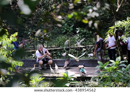 KUALA LUMPUR - JUNE 05, 2016 : A Visitor to KL Bird Park Feeding the Birds in the Open Aviary. It is a popular tourist attraction in the country, receiving an annual average of 200,000 visitors.  - stock photo