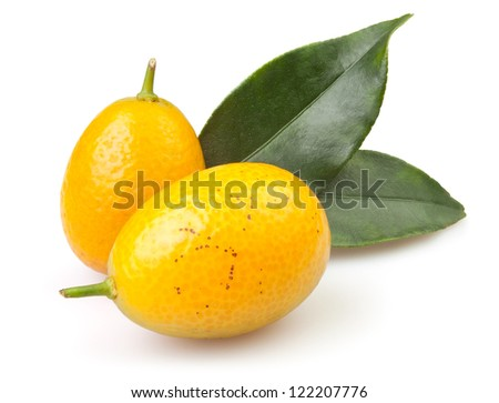 kumquat two on white background