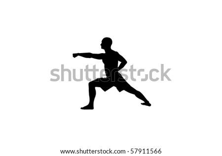 kungfu posture - stock photo