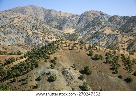 Kurdistan landscape - stock photo