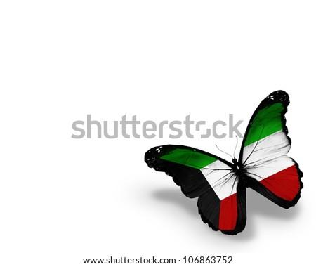 Kuwaiti flag butterfly, isolated on white background - stock photo