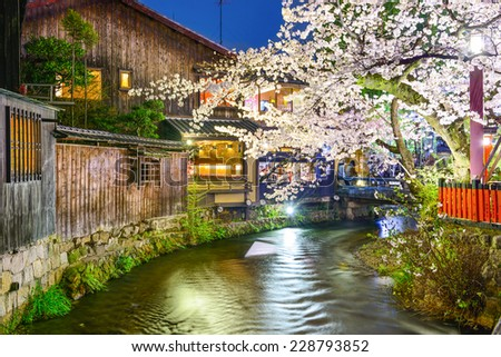 Kyoto, Japan at the Shirakawa River during the spring cherry blosson season. - stock photo