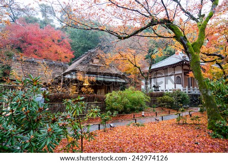KYOTO, JAPAN - DECEMBER 1, 2014: Tourists visit the Hogonin Temple. This temple and landscaped gardens are reminiscent of the eighth century period Japan and is a major tourist attraction in Kyoto. - stock photo