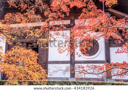 Kyoto, Japan- November 28,2015 : Red Maple falls in Autumn at Tofukuji Temple, Kyoto, Japan.