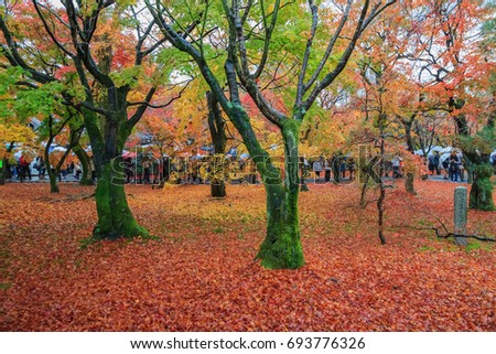 Kyoto, Japan- November 27,2016 : Tourists enjoy sightseeing at Tofukuji Temple in the autumn with full bloom of maple leave in Kyoto, Japan.
