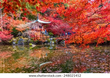 Kyoto 24 NOV 2014 , A traveler travel to Autumn at daigoji temple , Kyoto ,Japan - stock photo