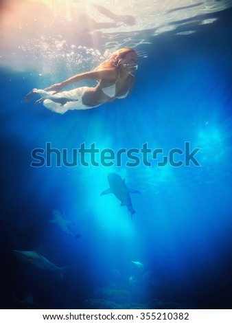 l female swimmer attacked by Great White Shark - stock photo