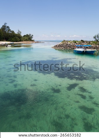 La Digue - November 9, 2014: A large school of fish in the clear water of clean sea near the port of the island of La Digue, and a small boat and shore away November 9, 2014, La Digue, Seychelles - stock photo