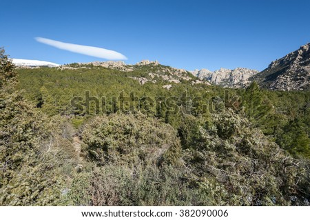 La Pedriza from Canto Cochino, in Guadarrama Mountains, Madrid, Spain. It can be seen The Cancho de los Muertos (Peak of the deads), El Pajaro (Bird Peak), Las Buitreras (Vulture Peak) and Sirio Peak - stock photo