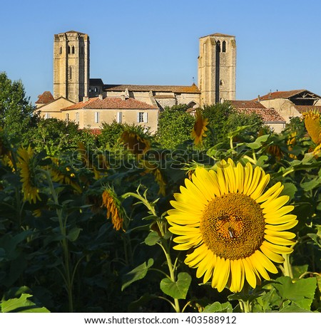 LA ROMIEU, FRANCE - AUGUST 5, 2010: La Romieu is a little village of Gers in Gascony. The collegiate church includes a cloister and two towers. UNESCO - the Pilgrim's Road to Santiago de Compostela - stock photo