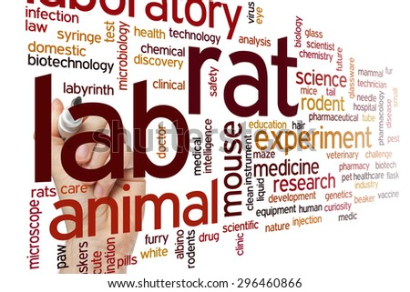 Lab rat concept word cloud background - stock photo
