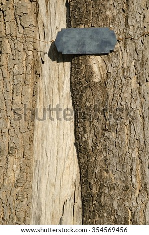 label on texture tree.