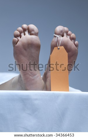 Labeled feet of a corpse in the morgue - stock photo