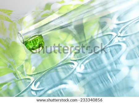 Laboratory plant  - stock photo