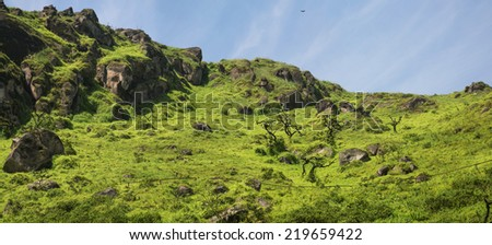 Lachay hills, national reserve sited near Lima city, Peru. this hills become a green with the sea mist in winter season.  - stock photo