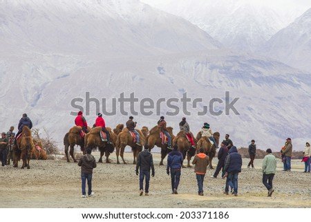 Ladakh, INDIA -  April 18: Cameleer and customers at Nubra Valley on April 18, 2014 in Ladakh, India. Apart from farming, camel riding activity for traveler - stock photo