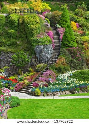 Ladder in Sunken Garden of Butchart Gardens, Victoria, British Columbia - stock photo