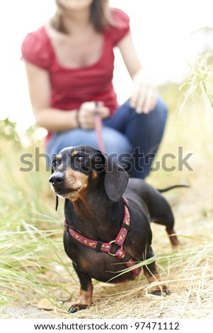 Lady holding her Dachshund dog on a leash - stock photo