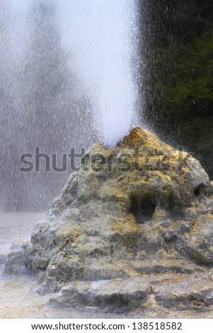 Lady Knox Geyser erupting in Rotorua, New Zealand - stock photo