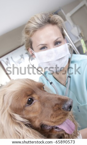 Lady  veterinarian with dog