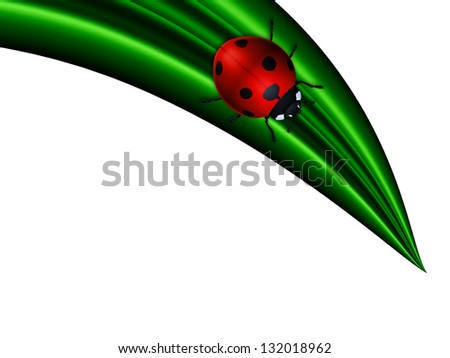 ladybird sitting on green leaf over white background
