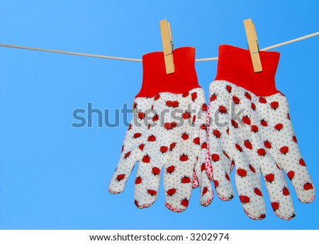 Ladybug Gardening Gloves on Clothes Line
