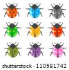 Ladybug insect glossy icon set - stock photo