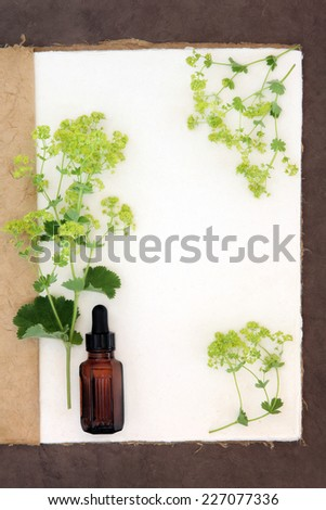 Ladys mantle herb flower border with medicinal dropper bottle on a natural hemp notebook and brown paper background. Alchemilla. - stock photo