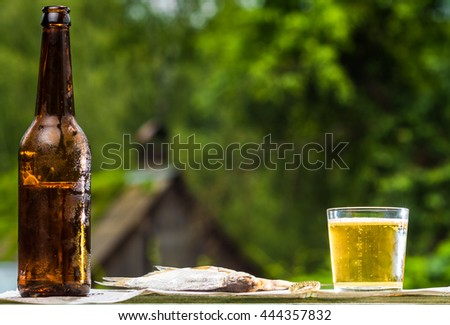 Lager beer with salt-dried vobla on newspaper over green garden background.