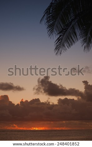 Lagoon and Palm Fronds at Dusk - Rarotonga, Cook Islands, Polynesia - stock photo