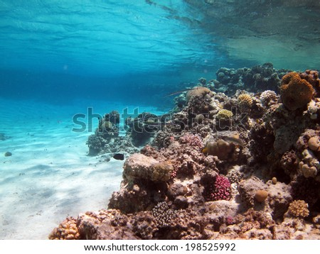 Lagoon, coral, sand and turquoise water - stock photo