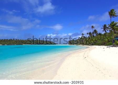 Lagoon, Sand and Palms - stock photo