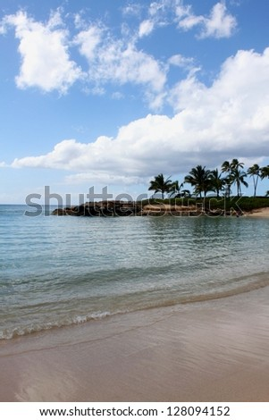lagoon with palm trees - stock photo