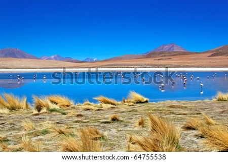 Laguna Desert, Altiplano, Bolivia, South America - stock photo