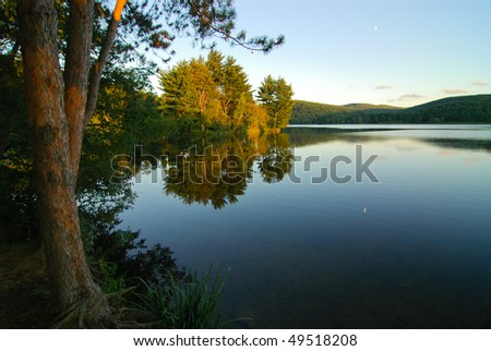 lake and coastal forest at dusk - stock photo