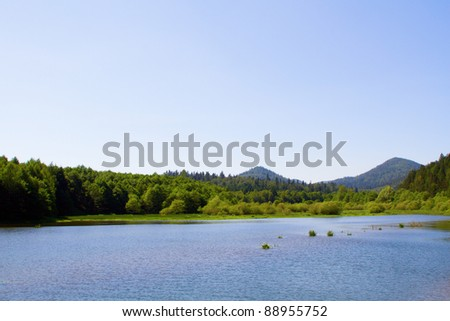 Lake and forest during bright day - stock photo