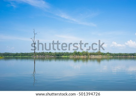 Lake and forest under blue sky at  Reservoir,
