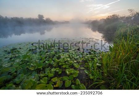 lake and green fields, fog, springe, sky - stock photo
