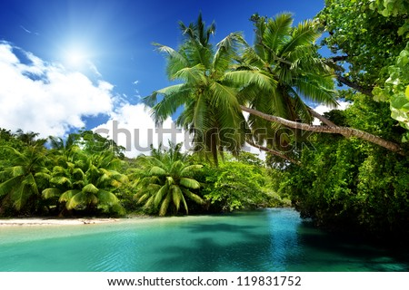 lake and palms, Mahe island, Seychelles - stock photo
