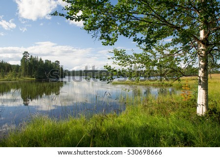 lake and trees in finland