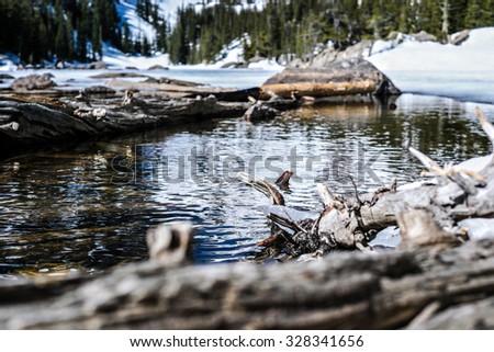 Lake in Rocky Mountain National Park, Colorado - stock photo