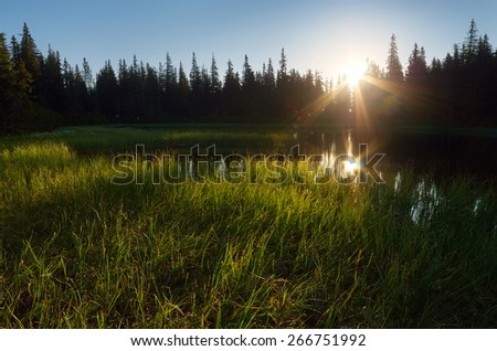 Lake in the mountain forest. Morning sunlight - stock photo