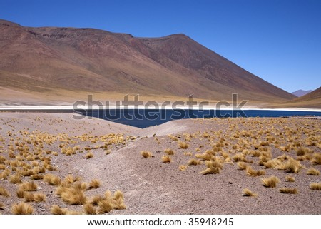 Lake Miscanti and Meniques in the Atacama desert near the Andes