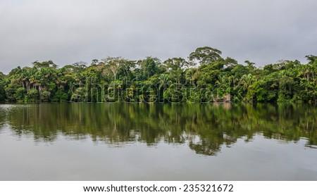 Lake Sandoval in Peru, Peruvian Amazon, South America. View of Lake Sandoval, Peruvian Amazon, Peru, South America. Located Tambopata-Candamo; a nature reserve. Basin south of the Madre de Dios River. - stock photo