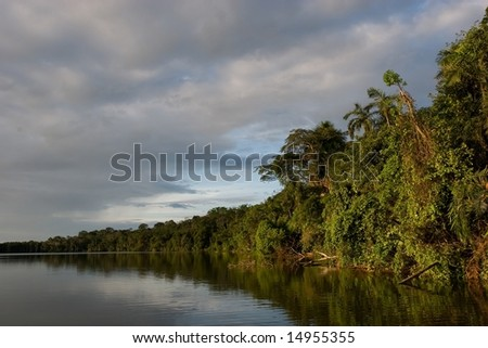 Lake Sandoval is located Tambopata-Candamo which is a nature reserve in the Peruvian Amazon Basin south of the Madre de Dios River
