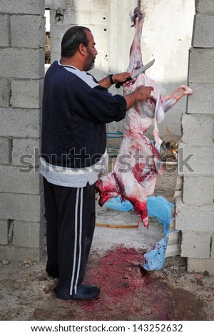 LAKIYA,ISR - DEC 12:Muslim slaughter a lamb on Eid al-Adha, Dec 8 2008.The festival is celebrated by sacrificing a lamb or other animal and distributing the meat to relatives, friends, and the poor.