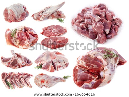 lamb meat in front of white background - stock photo