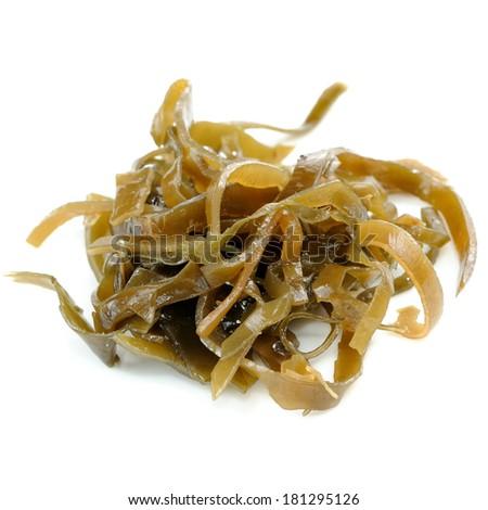 Laminaria (Kelp) Seaweed Close-Up Isolated on White Background - stock photo